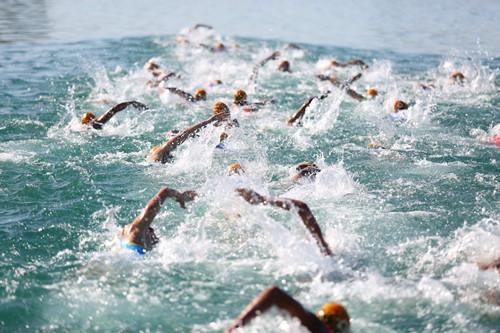 游泳赛段竞争激烈图片